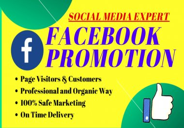 I will create keyword research for Facebook ads campaign promotion high traffic