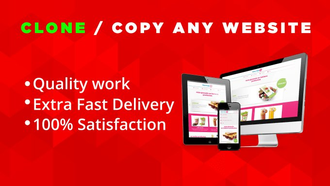 I will clone, copy, duplicate any website within 12 hours